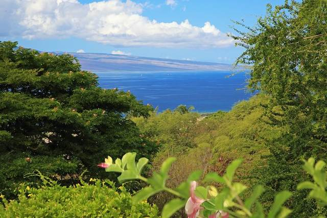 86 Awaiku St, Lahaina, HI 96761 (MLS #390500) :: Hawaii Life Real Estate Brokers