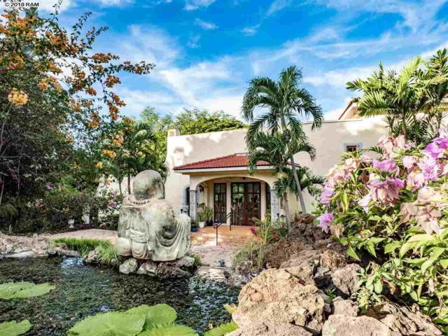 115 Kaimanu Pl, Kihei, HI 96753 (MLS #380627) :: Elite Pacific Properties LLC