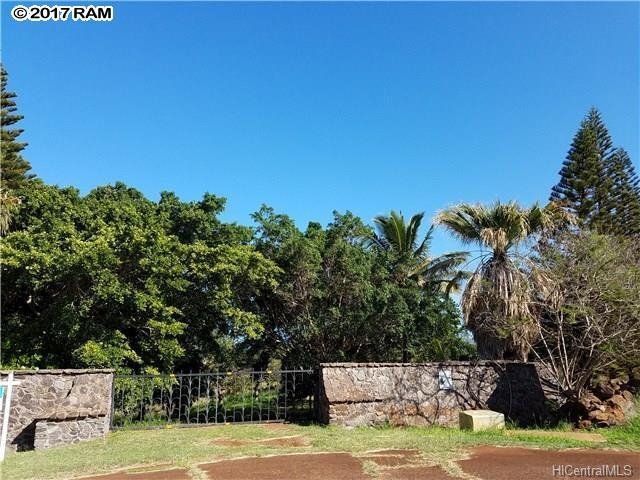 88 Papapa Pl, Maunaloa, HI 96770 (MLS #375947) :: Elite Pacific Properties LLC