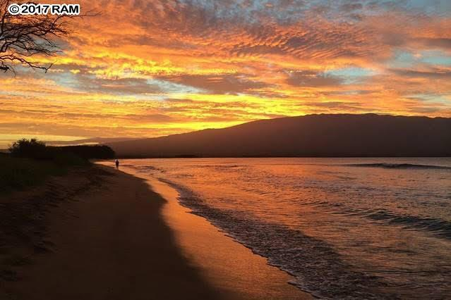 50 Hauoli St #104, Wailuku, HI 96793 (MLS #376318) :: Island Sotheby's International Realty