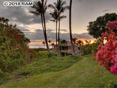 10 Wailea Ekolu Pl #1605, Kihei, HI 96753 (MLS #377229) :: Elite Pacific Properties LLC