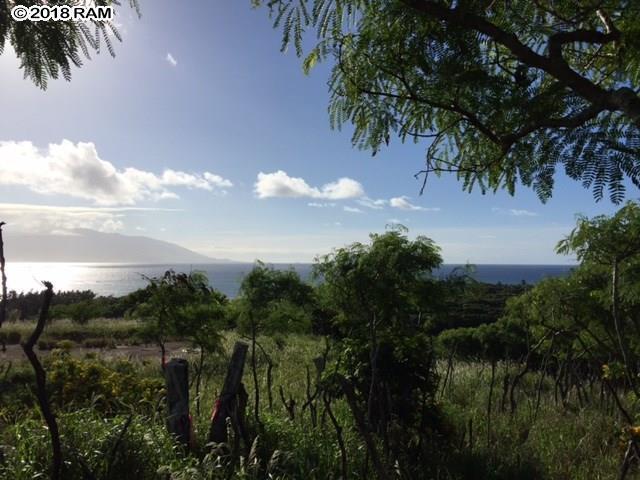 8511 Kamehameha V Hwy, Kaunakakai, HI 96748 (MLS #377410) :: Elite Pacific Properties LLC
