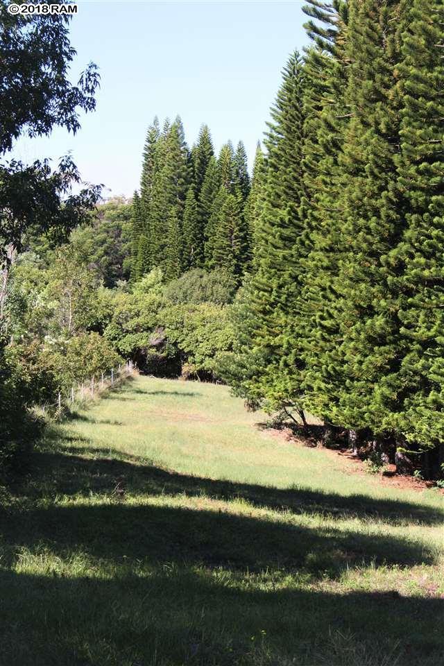 Kahakapao Rd Unit C, Makawao, HI 96768 (MLS #379627) :: Elite Pacific Properties LLC