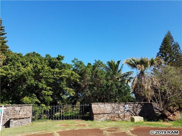 88 Papapa Pl, Maunaloa, HI 96770 (MLS #381953) :: Maui Estates Group