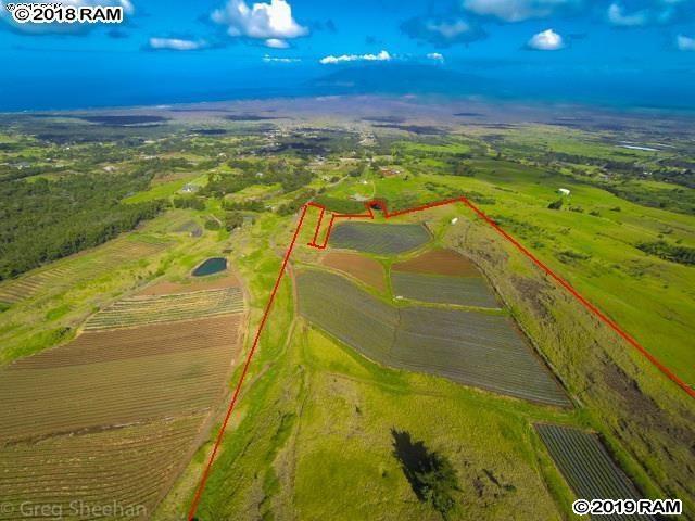 490 Koheo Rd A, Kula, HI 96790 (MLS #383491) :: Maui Estates Group
