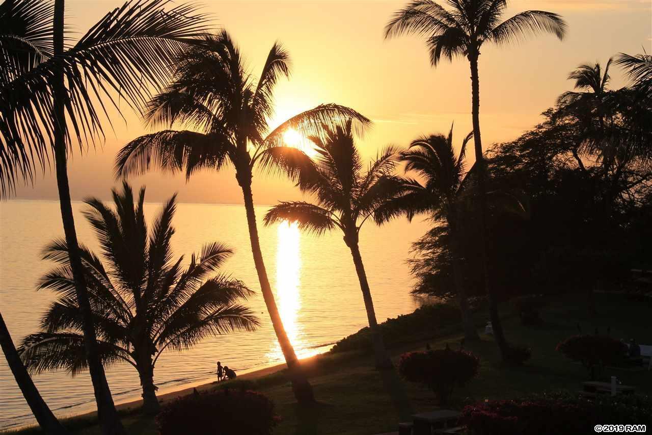 1000 Kamehameha V Hwy - Photo 1