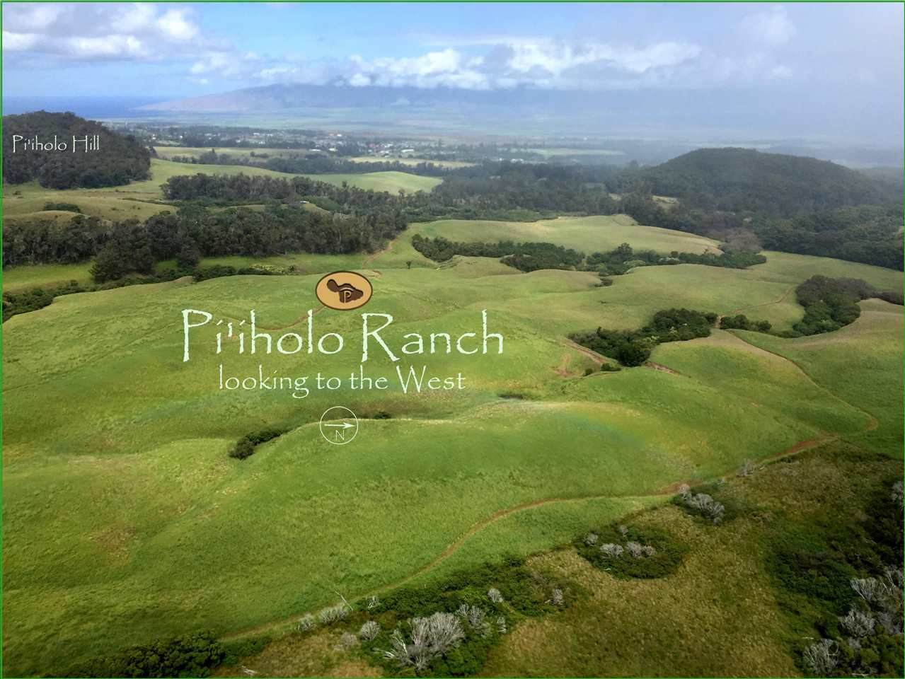 325 Waiahiwi Rd - Photo 1