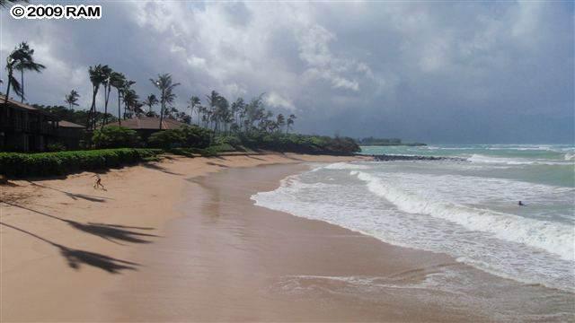 318 Paani Pl, Paia, HI 96779 (MLS #386495) :: Coldwell Banker Island Properties