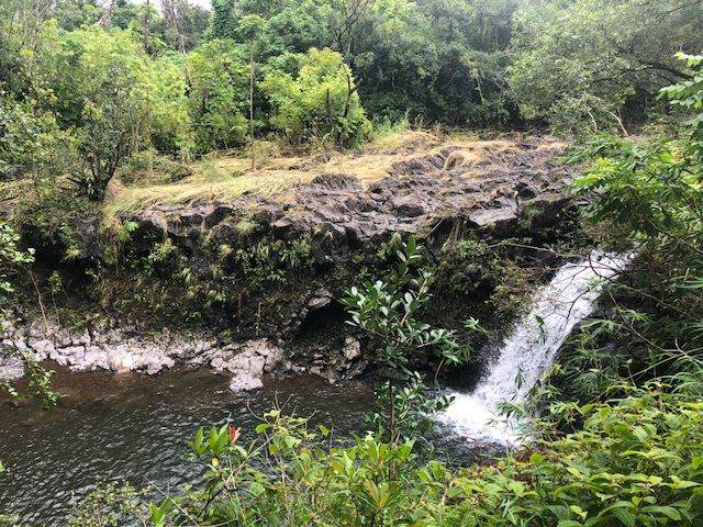 344 Nahiku Rd, Hana, HI 96713 (MLS #386794) :: Team Lally