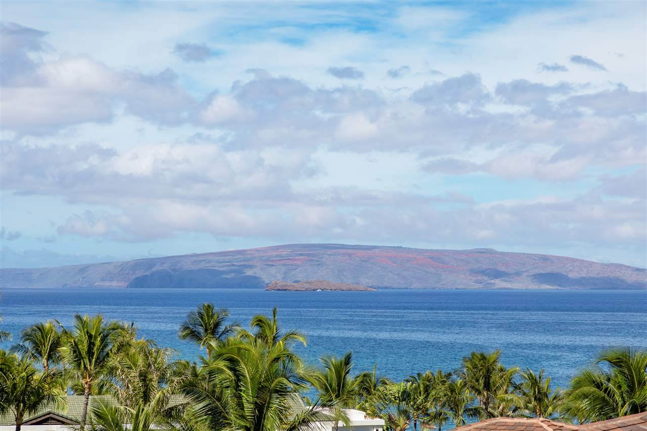 3800 Wailea Alanui Blvd - Photo 1