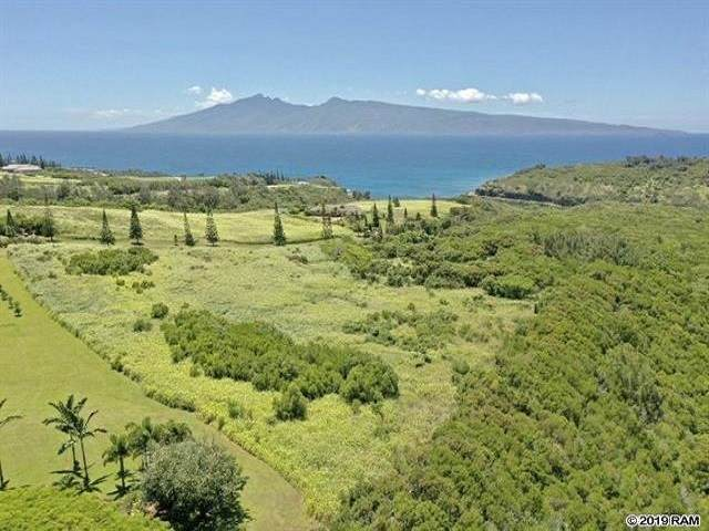98 Keoawa Pl, Lahaina, HI 96761 (MLS #387958) :: Maui Estates Group