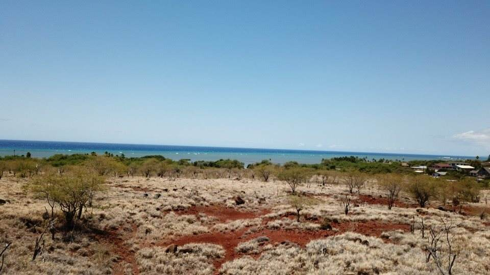 0 Kamehameha Hwy - Photo 1