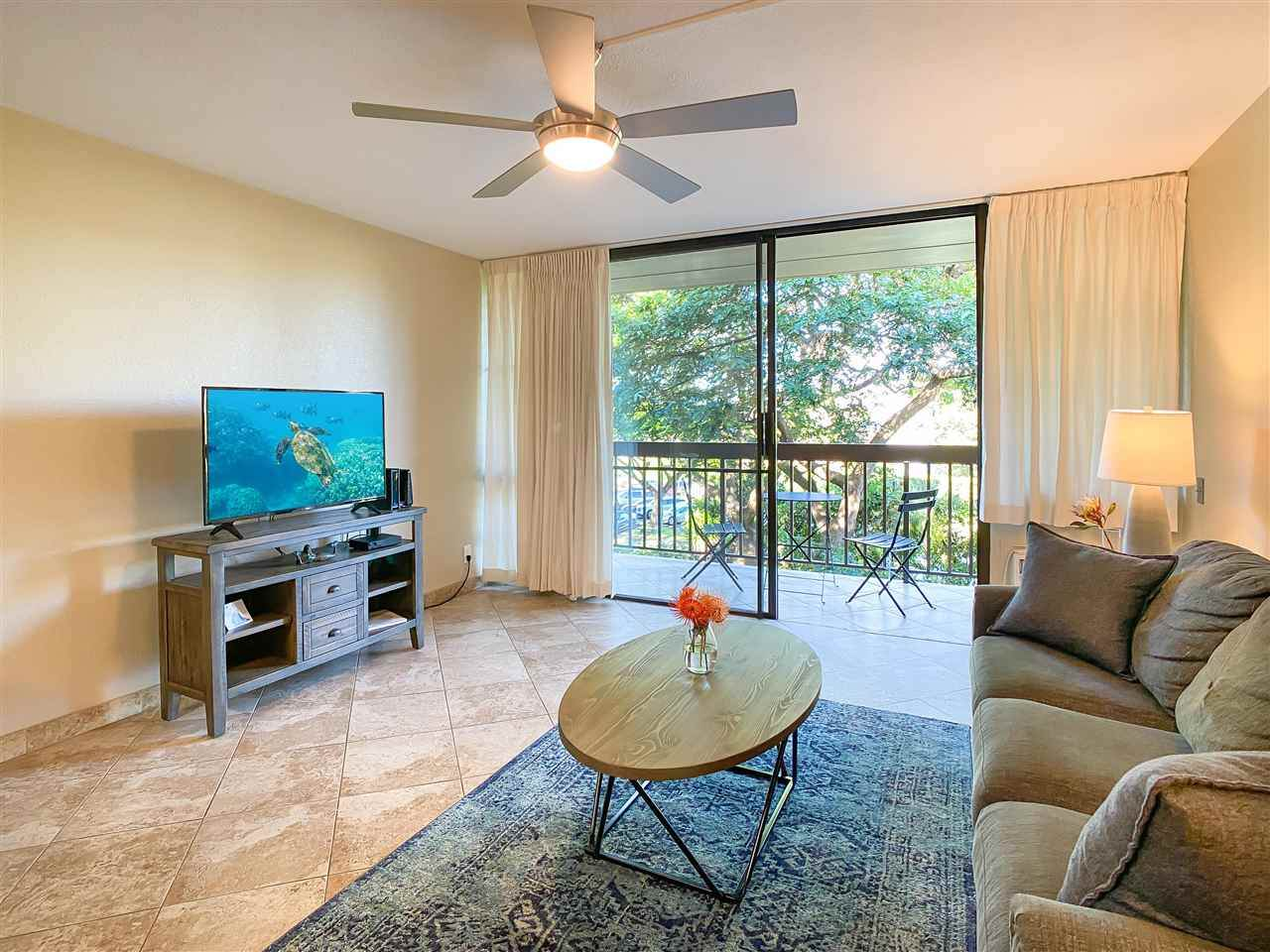 2191 Kihei Rd - Photo 1