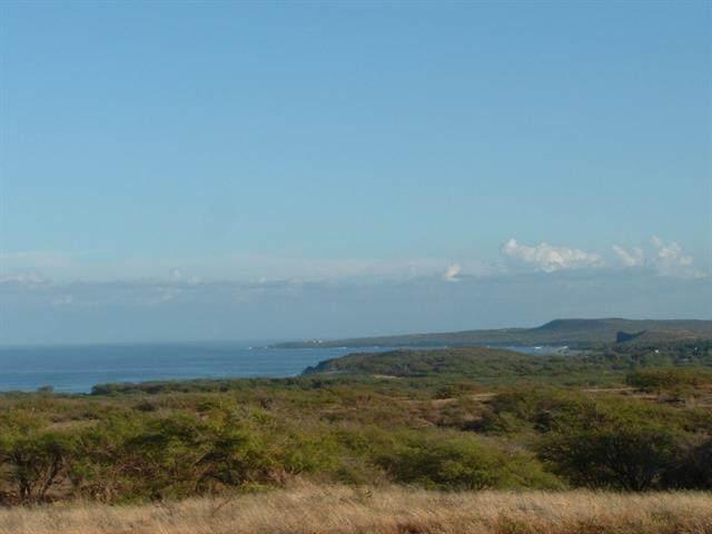 Ahiu Rd, Maunaloa, HI 06770 (MLS #392483) :: Coldwell Banker Island Properties