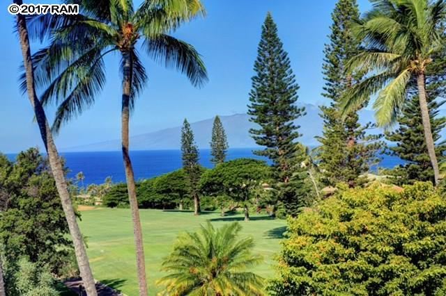 320 S Ulukoa Pl, Lahaina, HI 96761 (MLS #376542) :: Elite Pacific Properties LLC