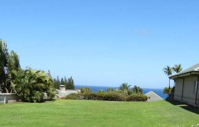 1010 Sunset Pl, Lahaina, HI 96761 (MLS #388568) :: Speicher Group