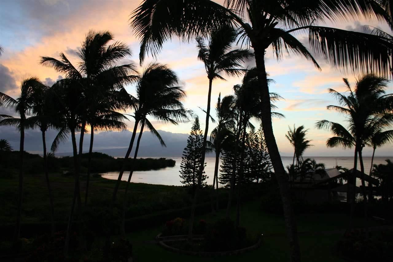 7146 Kamehameha V Hwy - Photo 1