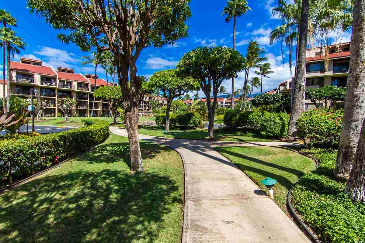 2695 Kihei Rd - Photo 1
