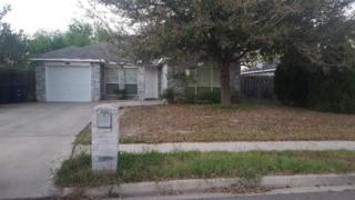 4220 Goldcrest Avenue, Mcallen, TX 78504 (MLS #204278) :: The Ryan & Brian Team of Experts Advisors