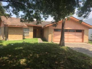 905 Bugambilia Avenue, Hidalgo, TX 78557 (MLS #205395) :: The Ryan & Brian Team of Experts Advisors