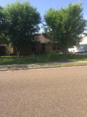 3402 Granjeno Avenue, Hidalgo, TX 78557 (MLS #205427) :: The Ryan & Brian Team of Experts Advisors