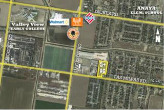 1700 Las Milpas Road, Pharr, TX 78577 (MLS #205920) :: The Ryan & Brian Team of Experts Advisors