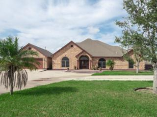 6119 N Fm 493, Donna, TX 78537 (MLS #206254) :: The Ryan & Brian Team of Experts Advisors