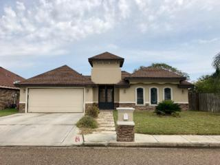 1903 Mimosa Drive, Weslaco, TX 78596 (MLS #206295) :: The Ryan & Brian Team of Experts Advisors