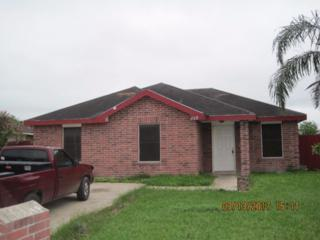 412 Canela Drive, Alamo, TX 78516 (MLS #206369) :: The Ryan & Brian Team of Experts Advisors