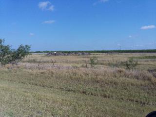 5406 E Las Milpas Road, Pharr, TX 78577 (MLS #206402) :: The Ryan & Brian Team of Experts Advisors