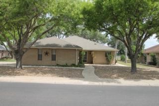 324 Diana Drive, Alamo, TX 78516 (MLS #206440) :: The Ryan & Brian Team of Experts Advisors