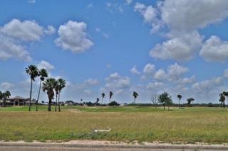 3802 S Border Avenue, Weslaco, TX 78596 (MLS #206453) :: The Ryan & Brian Team of Experts Advisors