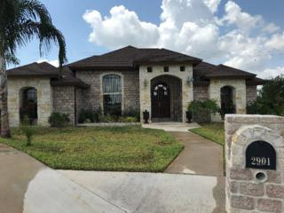 2901 N Thicket Drive, Weslaco, TX 78599 (MLS #206491) :: The Ryan & Brian Team of Experts Advisors