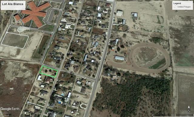 Lot 36 Ridge Road, Roma, TX 78584 (MLS #217895) :: Top Tier Real Estate Group