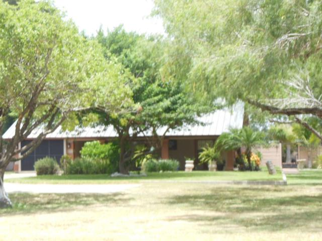1521 Griffin Parkway, Mission, TX 78572 (MLS #218061) :: Jinks Realty