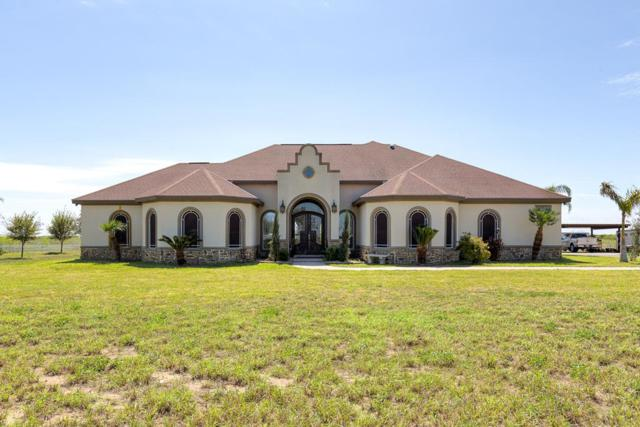 19917 Buck Fawn Drive, Edinburg, TX 78542 (MLS #218141) :: Jinks Realty