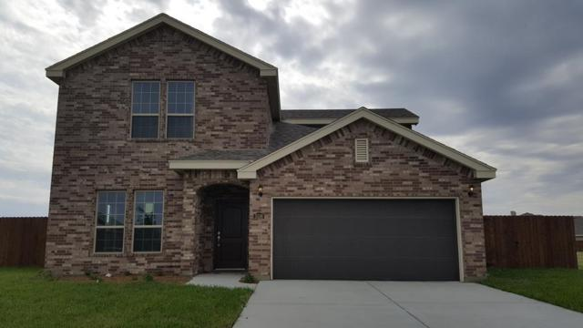 5136 Lost Creek Lane, Mcallen, TX 78504 (MLS #218252) :: Jinks Realty