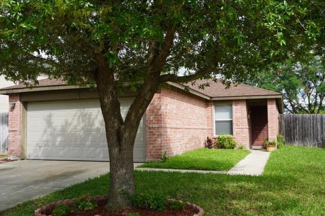 6312 N 19th Street, Mcallen, TX 78504 (MLS #218412) :: Jinks Realty