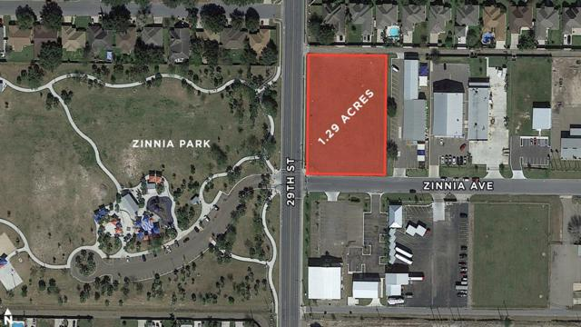 2812 Zinnia Avenue, Mcallen, TX 78504 (MLS #218463) :: Jinks Realty