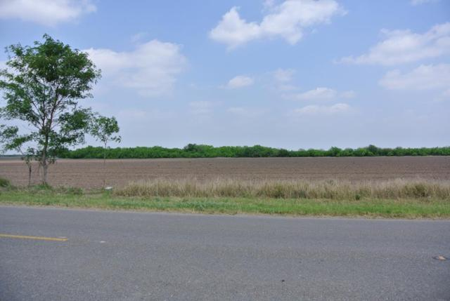 00 Mile 20, Edinburg, TX 78538 (MLS #218476) :: Key Realty