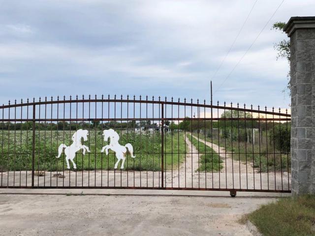 9105 Texan Road, Mission, TX 78574 (MLS #218523) :: Jinks Realty