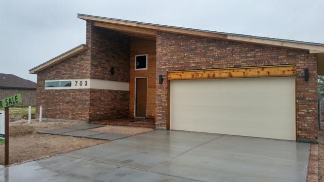 703 Aldo Street, Mission, TX 78574 (MLS #218554) :: Jinks Realty