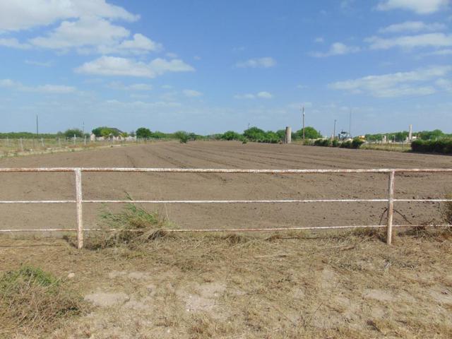 6700 Texan Road, Mission, TX 78504 (MLS #218704) :: Jinks Realty