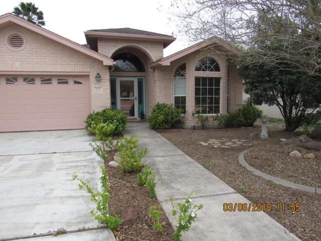 212 Diana Drive, Alamo, TX 78516 (MLS #219019) :: The Ryan & Brian Real Estate Team