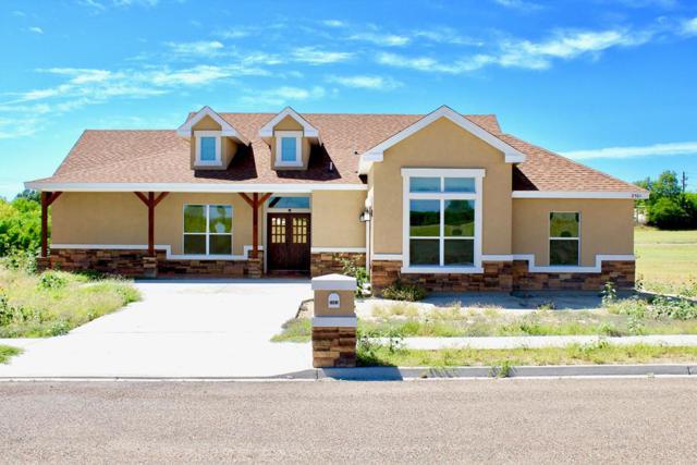 2501 Majesty Palm Drive, Rio Grande City, TX 78582 (MLS #219029) :: Jinks Realty
