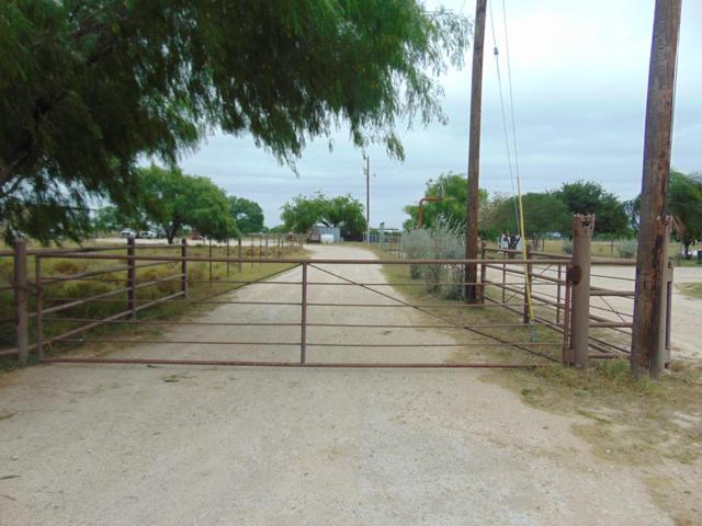 3 3/4 Western Road, Mission, TX 78572 (MLS #219096) :: Jinks Realty