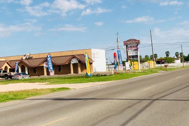 713 N Bentsen Palm Drive, Mission, TX 78572 (MLS #219202) :: Jinks Realty