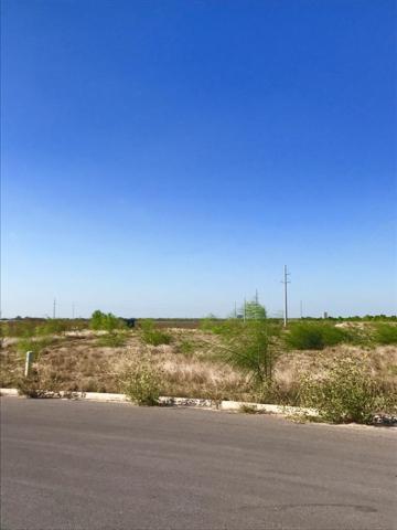 1900 Tanya Avenue, Mcallen, TX 78503 (MLS #219212) :: Jinks Realty