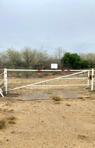 00 E Mile 3, Penitas, TX 78576 (MLS #219233) :: Jinks Realty