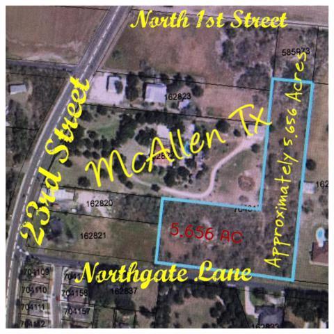 1/4 Mile Northgate Lane, Mcallen, TX 78504 (MLS #219319) :: Jinks Realty
